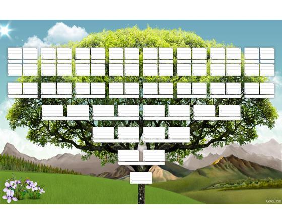 Accueil arbres généalogiques vierges arbres généalogiques